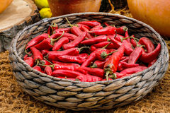 Red hot chili peppers. In a wicker basket Stock Photography
