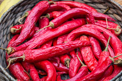 Red hot chili peppers on a wicker basket Royalty Free Stock Images