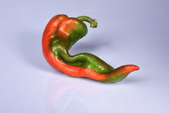 Red hot chili peppers XV Stock Photo