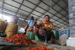 Red hot chili. In the traditional markets slopes of Mount Merapi, Central Java, Indonesia Royalty Free Stock Images