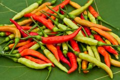 Red hot chilis Stock Photo