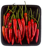 Red hot chilli. On a black tray Stock Photos