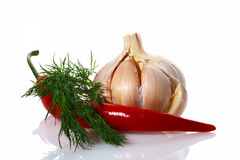 Red hot chilli chillies pepper dill garlic bulb Royalty Free Stock Photography
