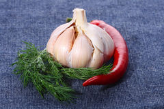 Free Red Hot Chilli Chillies Pepper, Dill With Garlic Royalty Free Stock Images - 4698899