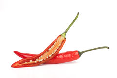 Red hot chilli pepper Royalty Free Stock Photo