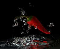 Red hot chilli pepper. In water with drops Royalty Free Stock Photography