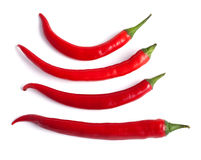 Red hot chilli pepper Royalty Free Stock Photography