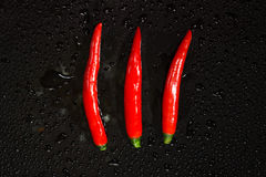 Red hot chilli pepper close up Royalty Free Stock Photography