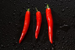 Red hot chilli pepper close up Stock Photography