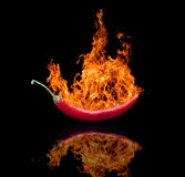 Red hot chilli pepper in flame Stock Image