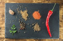 Spices and peppers from above on a background of slate. Red hot chilli pepper, spices, mustard, coriander, parsley, garlic, plank black slate and wooden board Stock Images