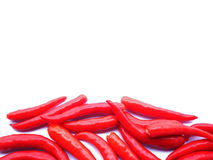 Red hot chilli pepper Royalty Free Stock Image
