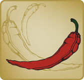 Red hot chilli pepper. Vector illustration. Royalty Free Stock Photography