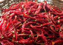Red hot chilli pepper in wicker basket. Long dried red chili peppers in a wicker basket Royalty Free Stock Photography