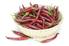Red hot chilli peppers in basket Royalty Free Stock Photography