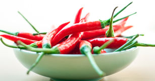 Red hot chilli peppers. Bowl of hot red chilli peppers Royalty Free Stock Photos