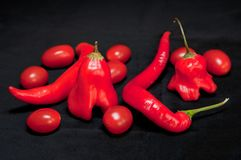 Red Hot Chilli Peppers and Cherry Tomatoes Royalty Free Stock Photography