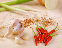Red hot chilli peppers with garlic and scallion Royalty Free Stock Photos