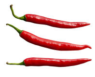 Red Hot Chilli Peppers Royalty Free Stock Photo