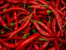 Red hot chilli peppers pattern texture background. Close up. Landscape. A backdrop ofRed hot chilli peppers. Street royalty free stock photo