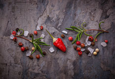 Red hot chilli peppers, rosemary and salt Royalty Free Stock Photo