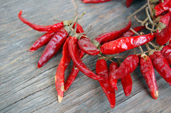 Red hot chilli peppers Stock Photography