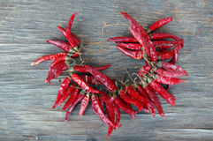 Red hot chilli peppers Royalty Free Stock Images