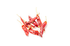 Red Hot Chilli. On white background Stock Photography