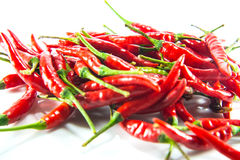 Red hot chilli. On white background Royalty Free Stock Image