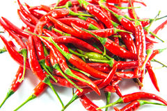 Red hot chilli. On white background Stock Photo