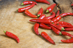 Red Hot Chillies Stock Image