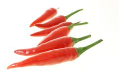 Red hot chillies Stock Images