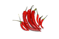 Red hot chillies isolated on white Royalty Free Stock Photography