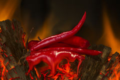 Red Hot. Red chillies peppers on top of burning logs melting, with flames in the background Royalty Free Stock Images