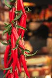 Red hot chilly peppers... Stock Images