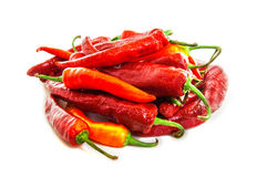 Red hot chilly peppers Royalty Free Stock Photography