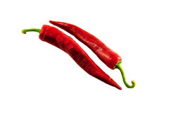 Red Hot Chilly peppers Stock Photography