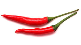 Red hot chily. Hot chili for cooking use royalty free stock image
