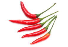 Red hot chily. Hot chili for cooking use stock photo