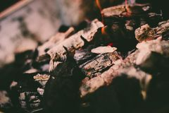 Red hot coal for cooking. A big bonfire to prepare delicious food on a beautiful afternoon royalty free stock images
