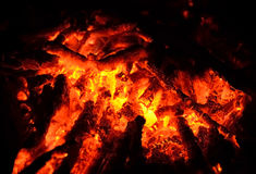 Red hot coals after bonfire. Royalty Free Stock Photo