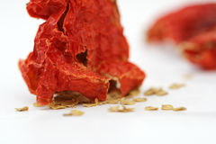 Red hot dried pepper Stock Images