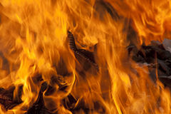 Red Hot Flames of Fire Royalty Free Stock Image