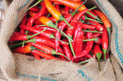 Red hot fresh chili pepper in burlap sack Stock Photo