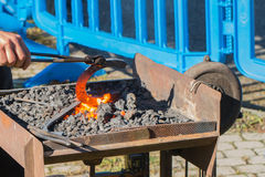 Red hot horse shoe in a portable coal furnace. Taken to forge with pincers royalty free stock images