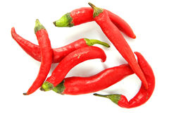 Red hot jalapeno peppers over white Stock Images