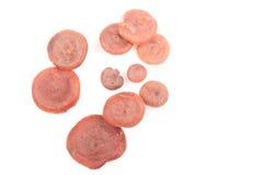 Red Hot Milk Cap. Rufous Milkcap or the Red Hot Milk Cap or Lactarius rufus mushroom on white Royalty Free Stock Photos