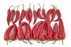 Red hot paprika Stock Images