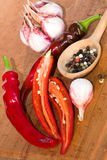 Red hot pepper Royalty Free Stock Photography