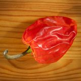 Red Hot Pepper Stock Photos